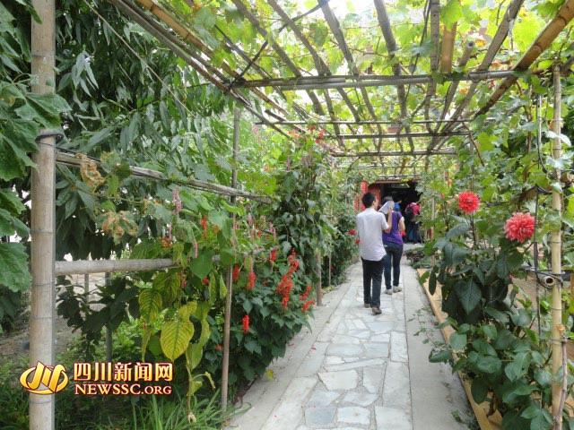 花园式的农家小院每年都会吸引不少游客-探寻神秘东方古堡 桃坪羌寨