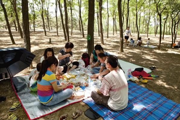 幼儿园主题墙野餐