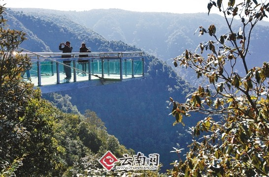 新平彝族傣族自治县依托良好的自然生态环境资源大力