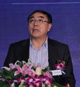 中国政法大学资本研究中心主任 刘纪鹏