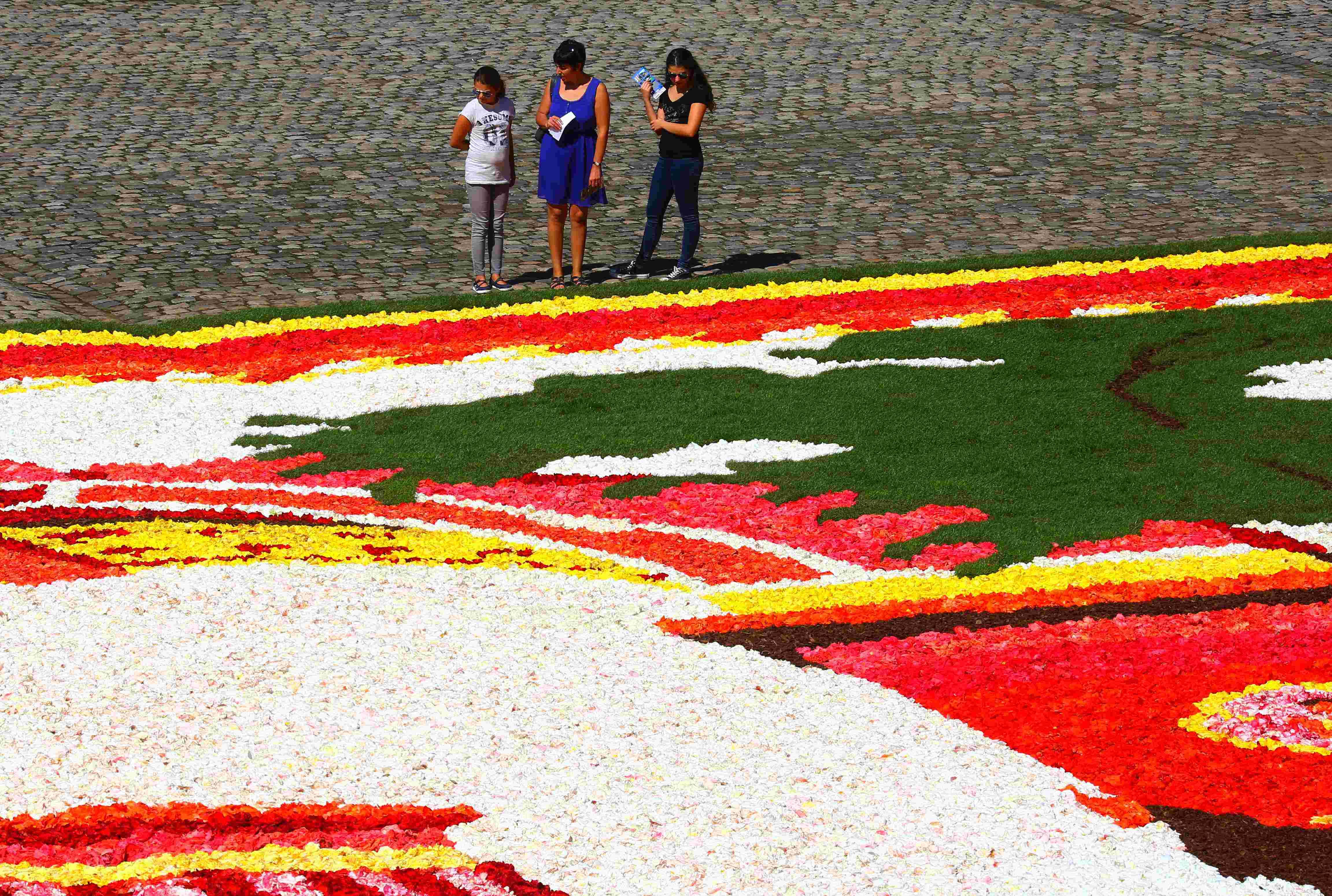 (锐视角)(3)比利时再现鲜花地毯