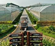 生态农业政策叠加